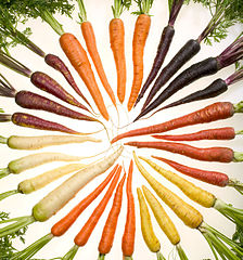 224px-Carrots_of_many_colors_cutout